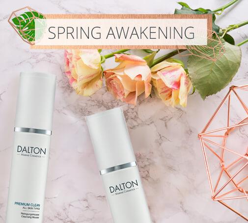 DALTON Stories - Spring Awakening