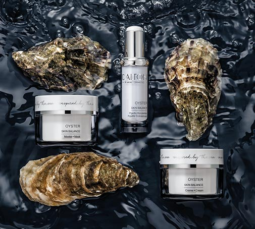 Oyster Collection Overview