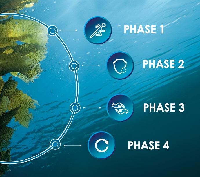 Das Wirkprinzip der DALTON Meereskosmetik Schritt für Schritt