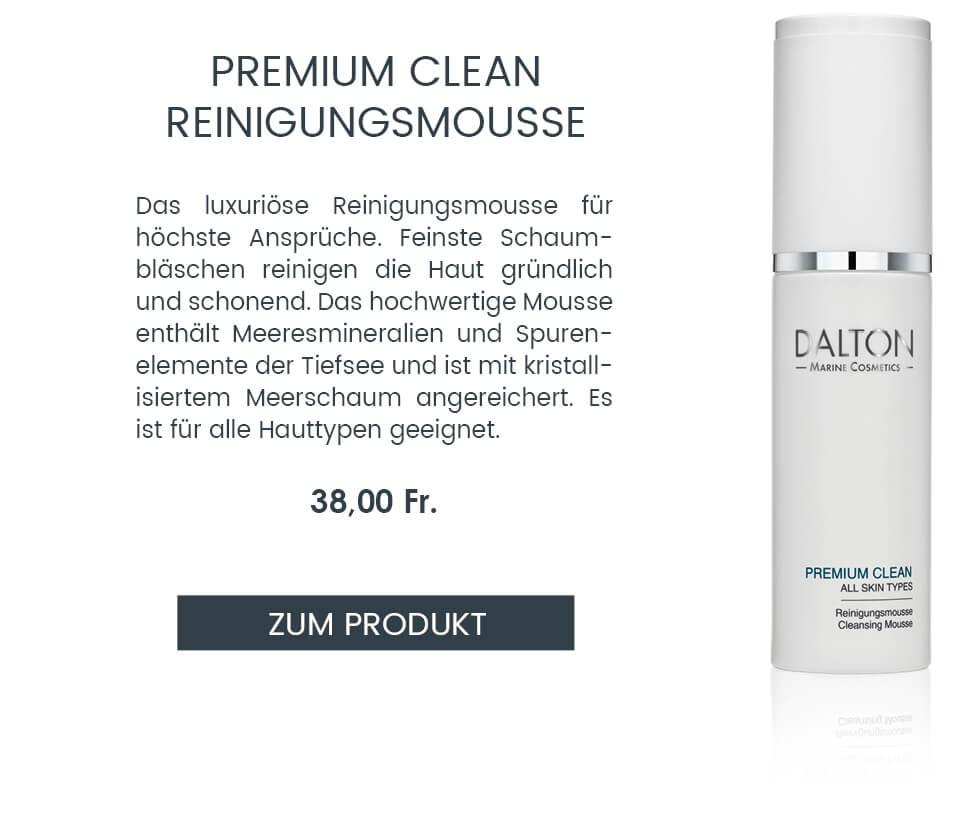 Premium Clean Reinigungsmousse