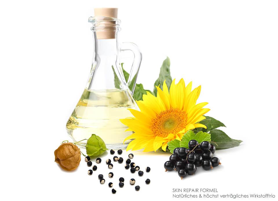 Ballonrebe, schwarze Johannisbeere & Extrakte der Sonnenblume als verträgliche Wirkstoffe für empfindliche Haut