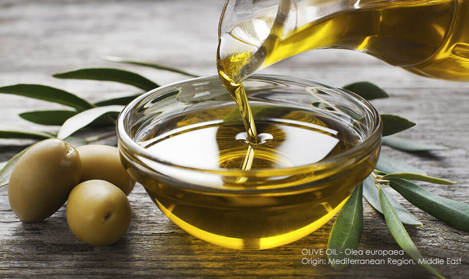 Deeply nourished and beautiful skin thanks to olive oil