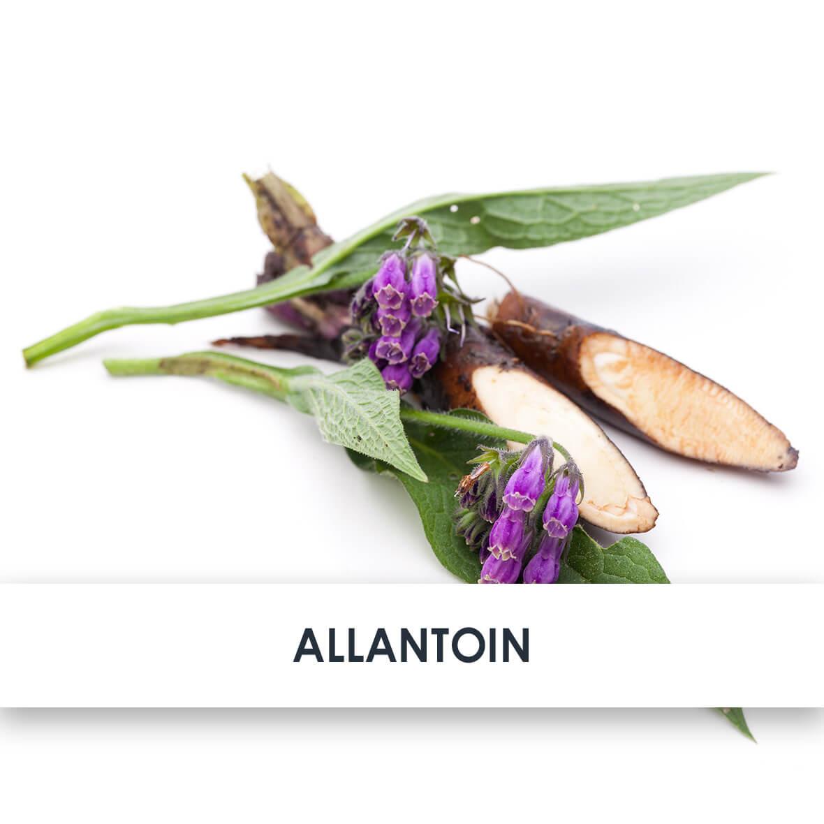 Wirkstoff Allantoin