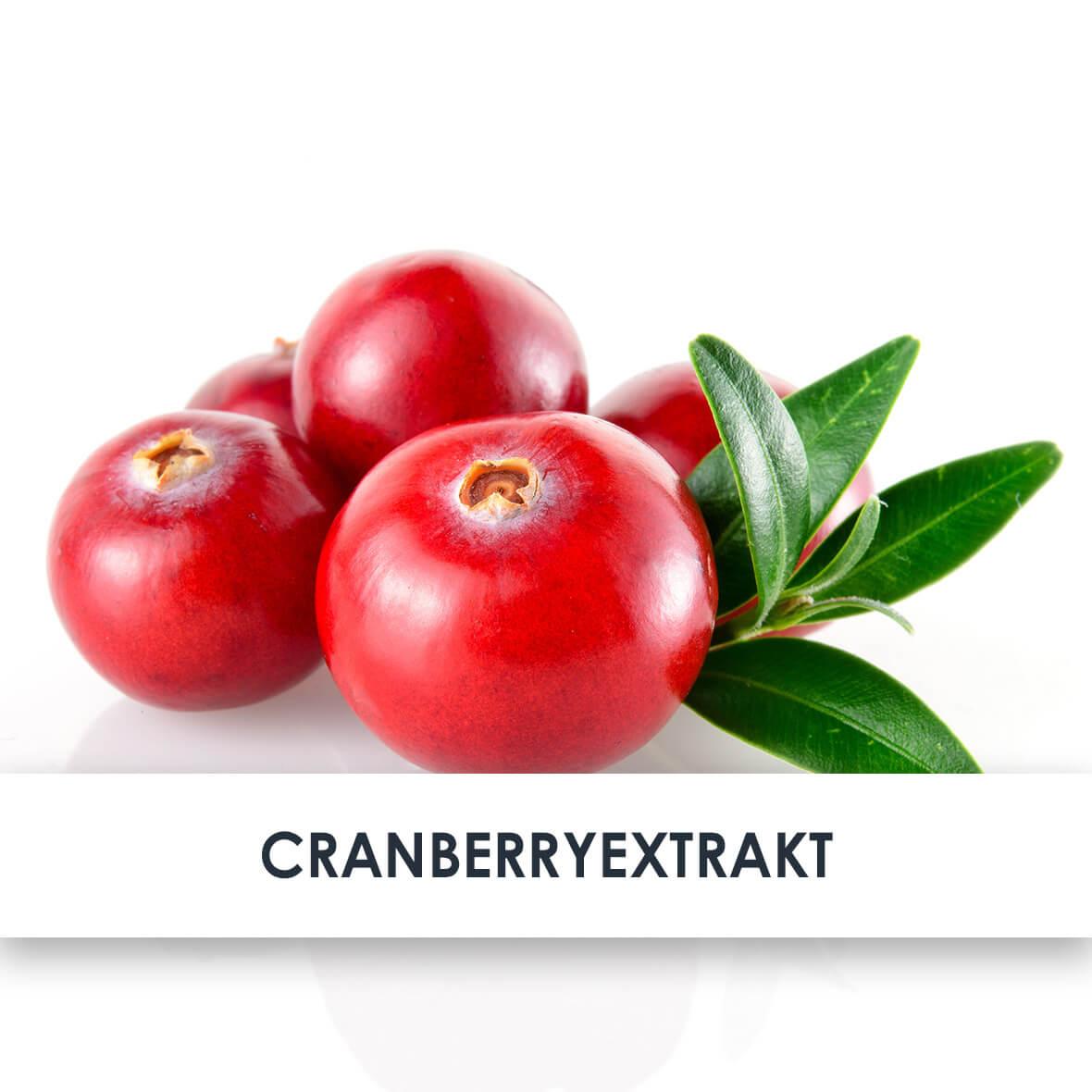 Wirkstoff Cranberryextrakt