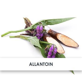 Active Ingredient Allantoin