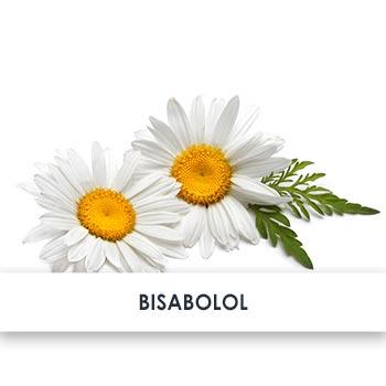 Wirkstoff Bisabolol