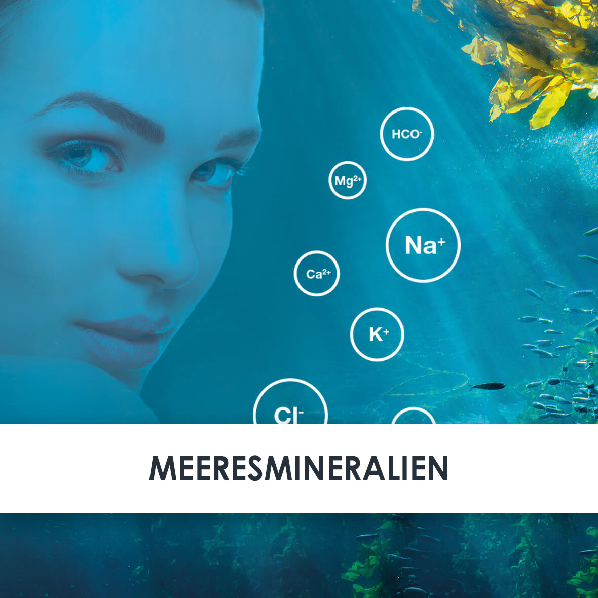 Wirkstoff Meeresmineralien
