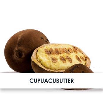 Wirkstoff Cupuacubutter