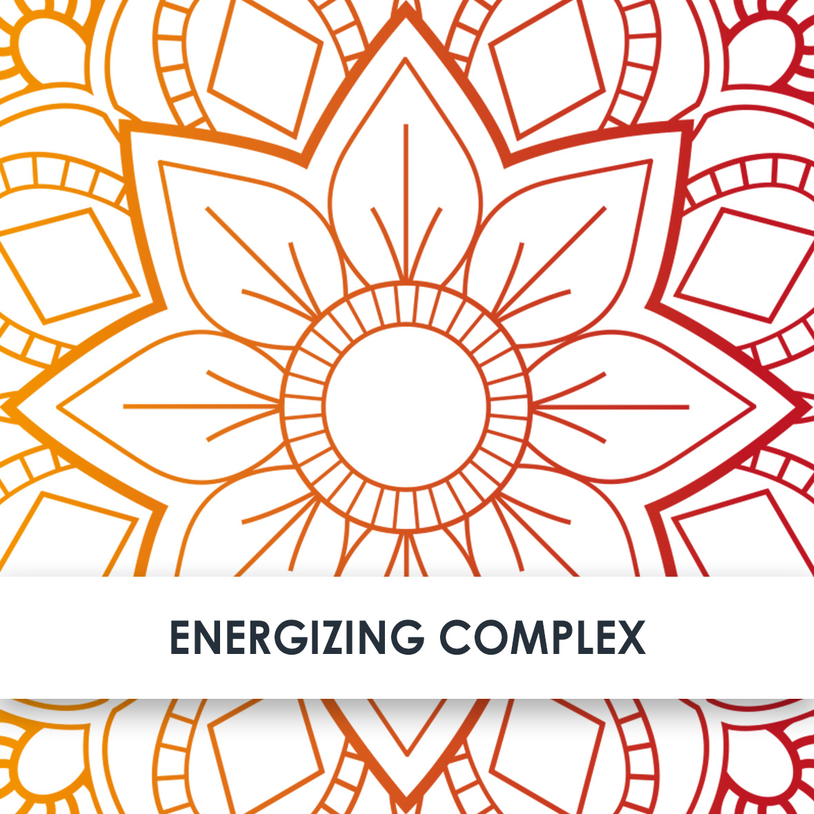Wirkstoff Energizing Complex