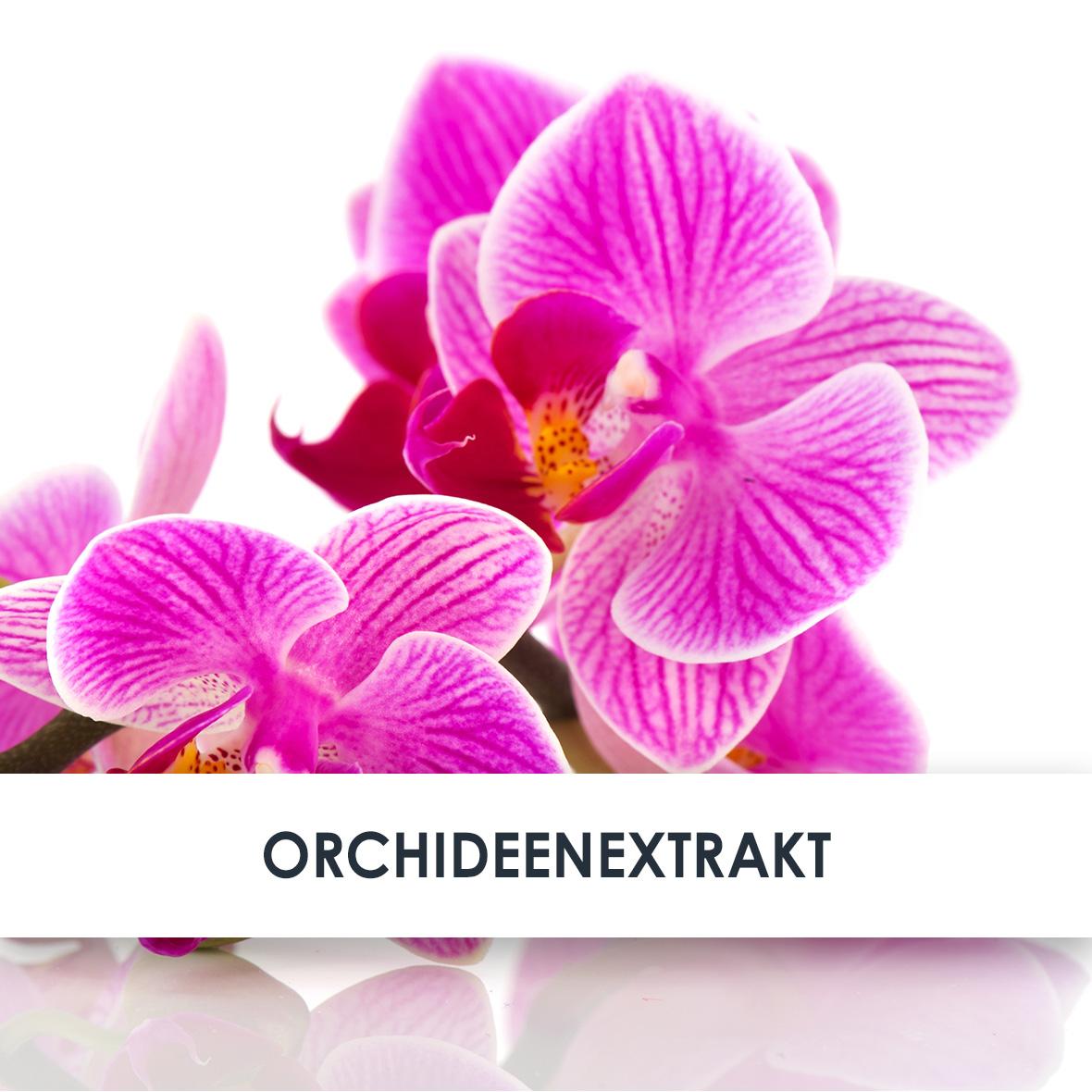 Wirkstoff Orchideenextrakt