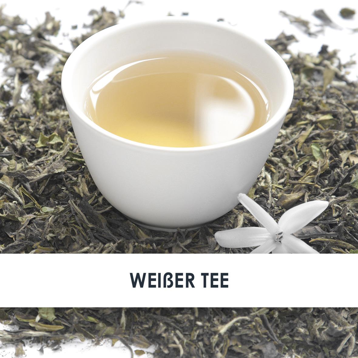 Wirkstoff Weißer Tee