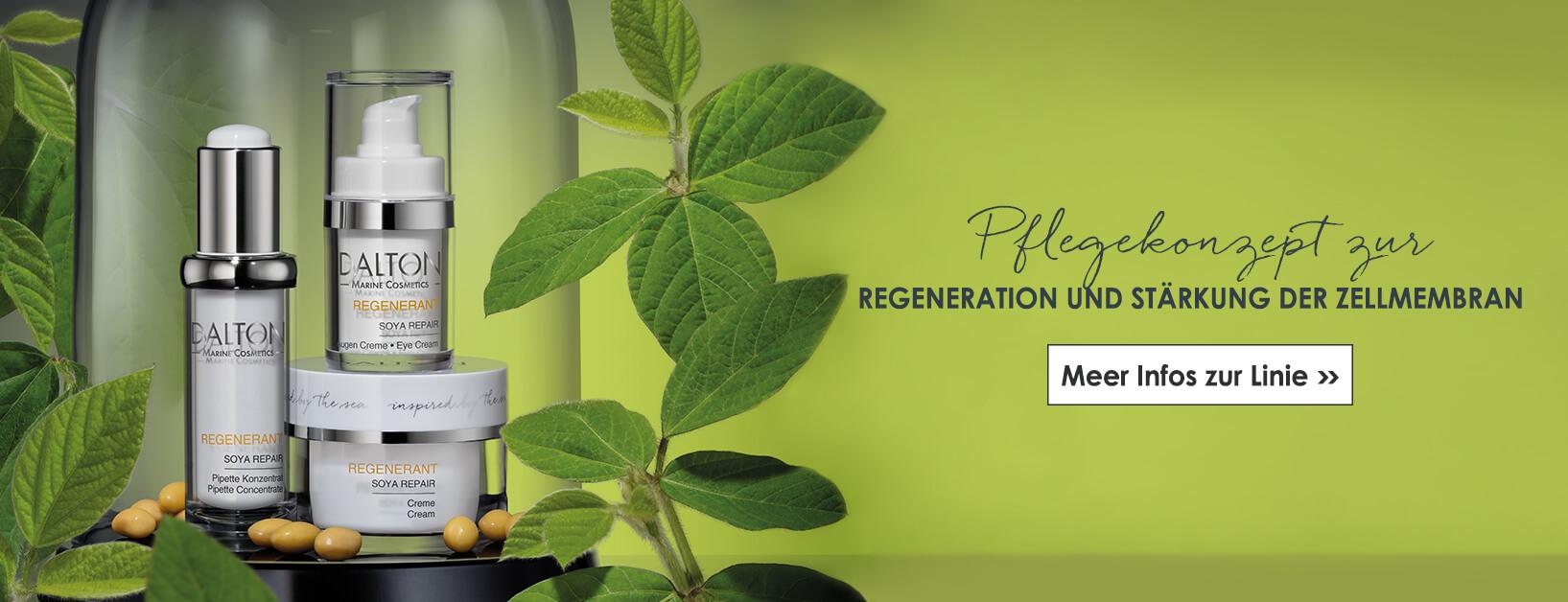 Pflegekonzept zur Regeneration und Stärkung der Zellmembran
