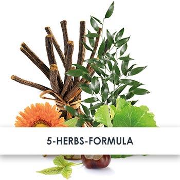 5-Herbs-Formula Active Ingredients