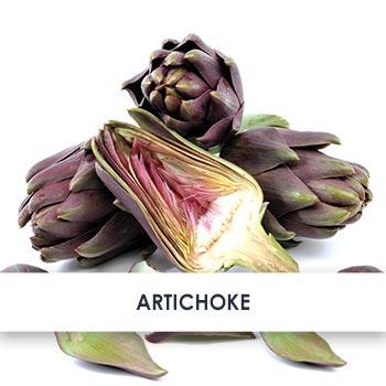 Active Ingredient Artichoke