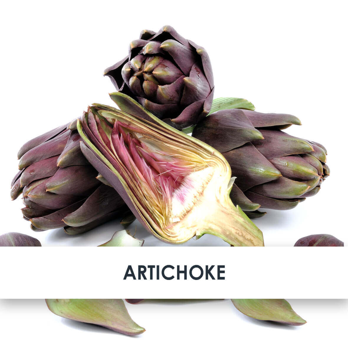 Active Ingredient Artichoke