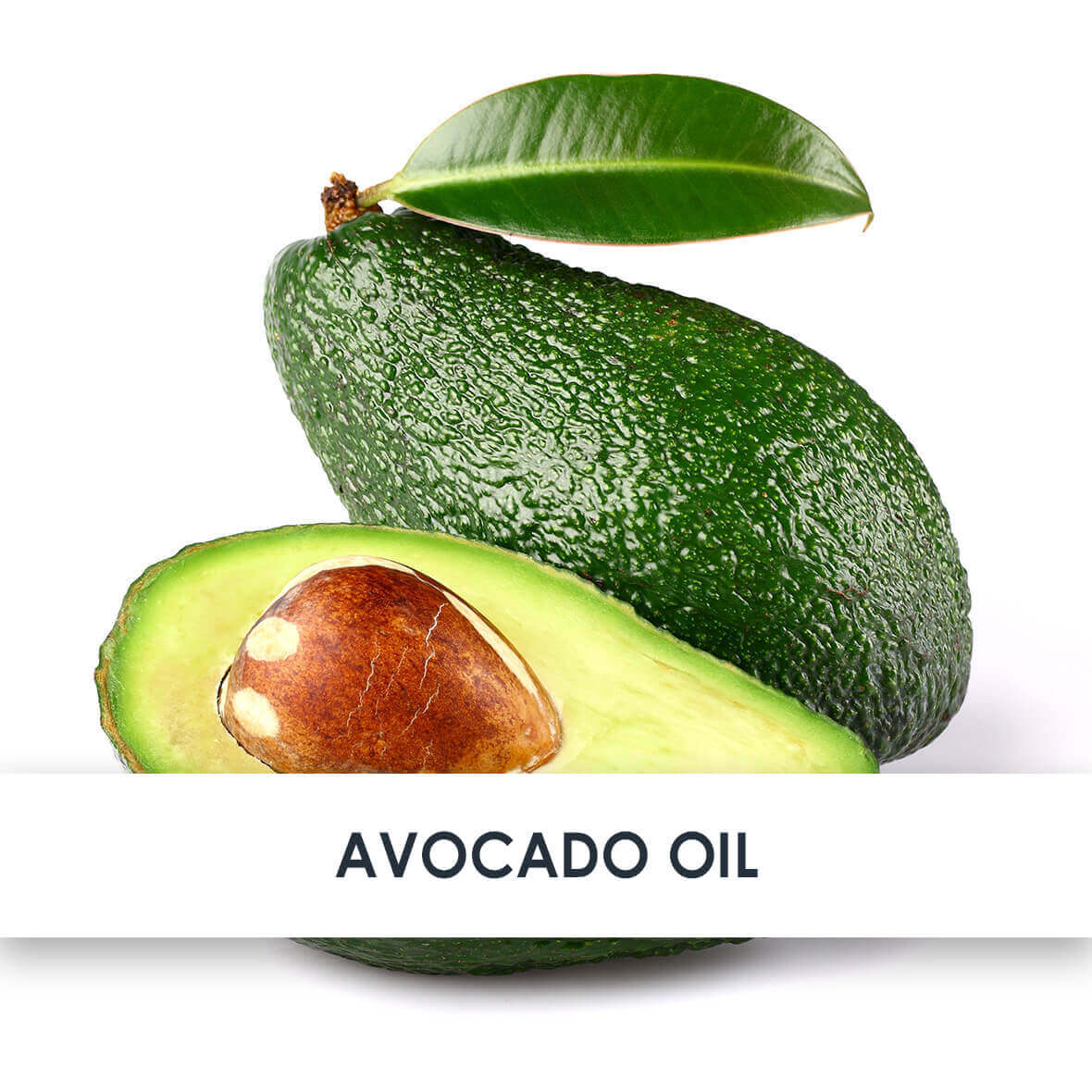 Active Ingredient Avocado Oil