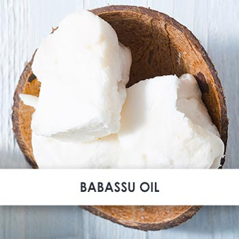 Active Ingredient Babassu Oil