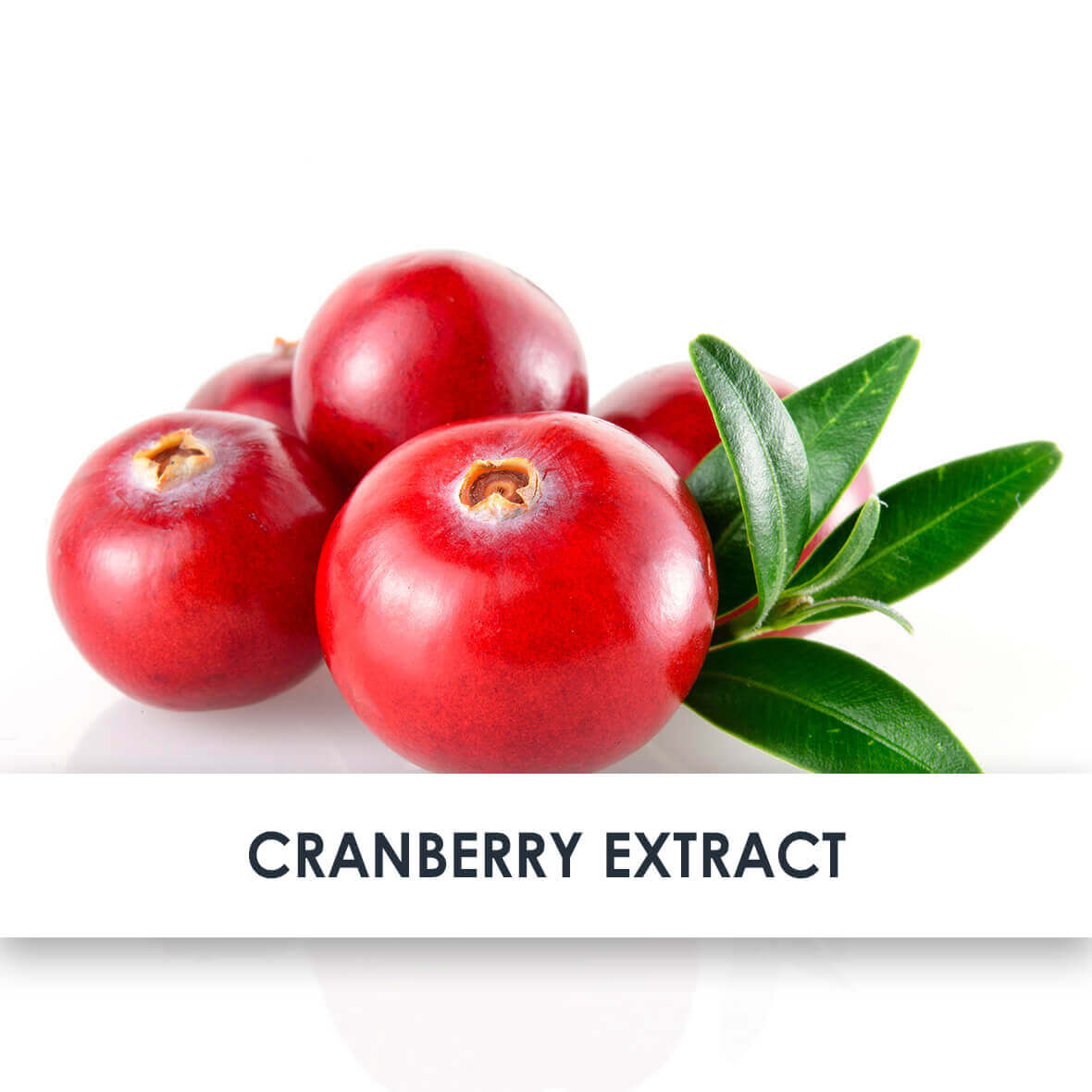 Cranberry Skincare Benefits
