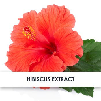 Hibiscus Skincare Benefits