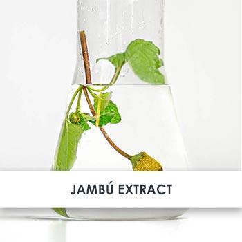 Jambú Extract Skincare Benefits