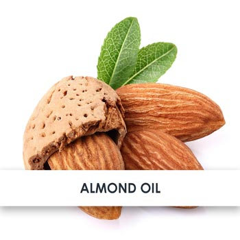 Active Ingredient Almond Oil