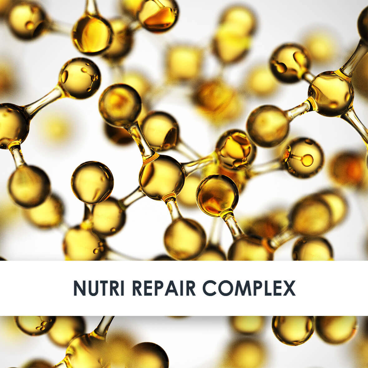 Nutri Repair Complex Active Ingredients