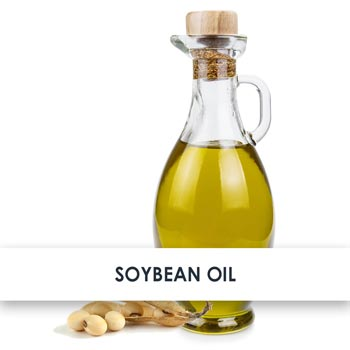 Soybean Oil Skincare Benefits