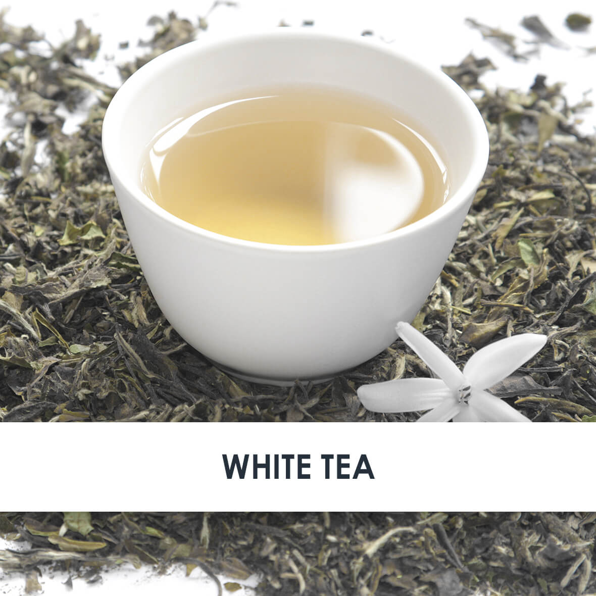 White Tea Skincare Benefits