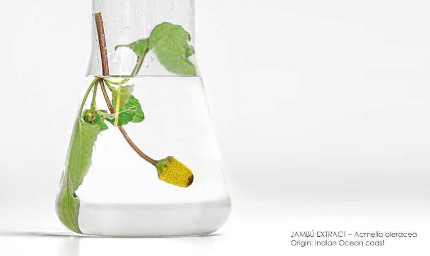 Wrinkle-reducing jambú extract – natural botox alternative