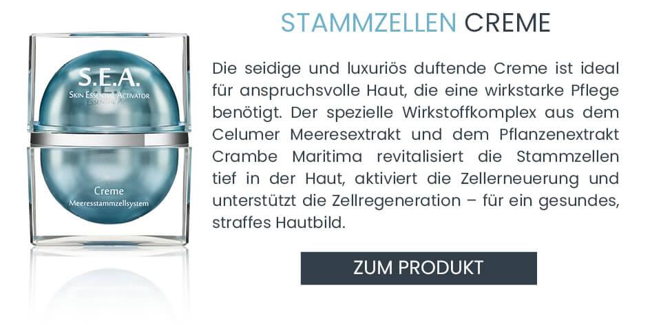 Anti-Aging Stammzellen S.E.A. Creme