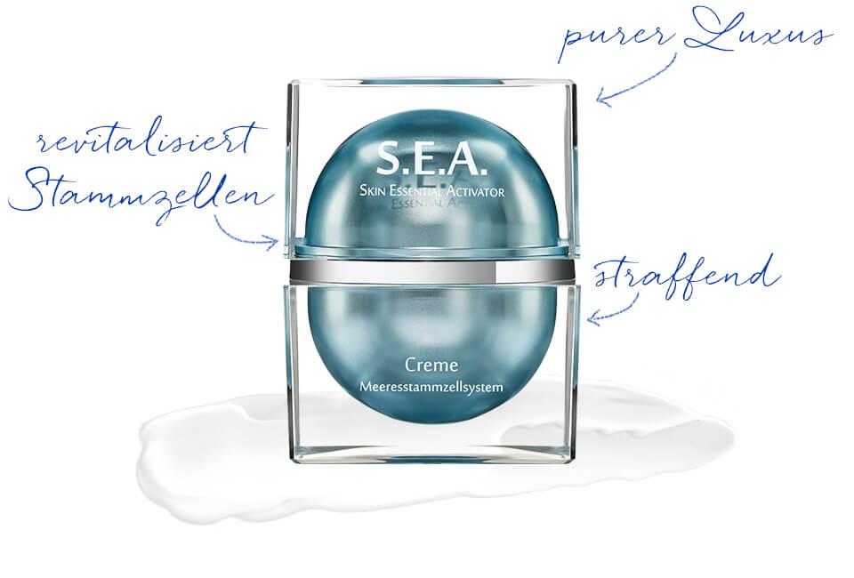 S.E.A. Anti-Aging Creme mit Stammzellenschutz