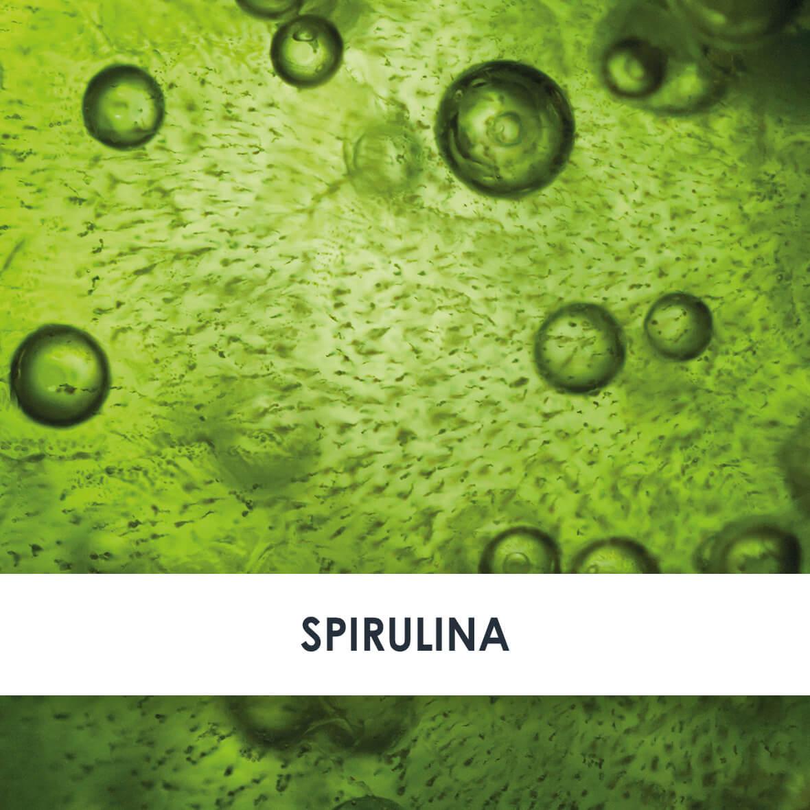 Wirkstoff Spirulina Alge